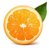 Naranja fresca madura — Vector de stock