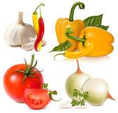 Vektor uppsättning av grönsaker: vitlök, chilipeppar, bell-peppar, tomater och lök — Stockvektor