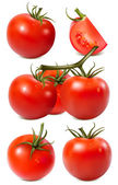 Vector collection of red ripe tomatoes with water drops. — Vector de stock
