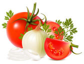 Vector of vegetables: onions and tomatoes — Stock Vector