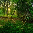 Kid´s Wigwam in Fairytale Forest — Stock Photo #11657809