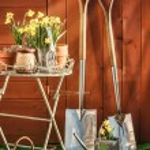 Gardening Concept — Stock Photo #11394910