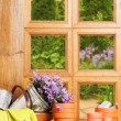 Gardening Window — Stock Photo