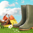 Wellington Boots — Stock Photo