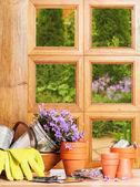 Finestra di giardinaggio — Foto Stock