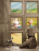 Teddy In The Window — Stock Photo