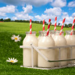 Stock Photo: Milk In Countryside