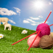 Knitting Yarn With Sheep — Photo