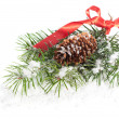 Snowy Fir Branch - Stock Photo