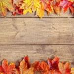 Autumn Leaf Border — Stock Photo #11466303
