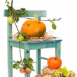 Halloween Pumpkin Chair With Spiders — Stock Photo