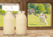 Two Bottles of Milk — Stock Photo