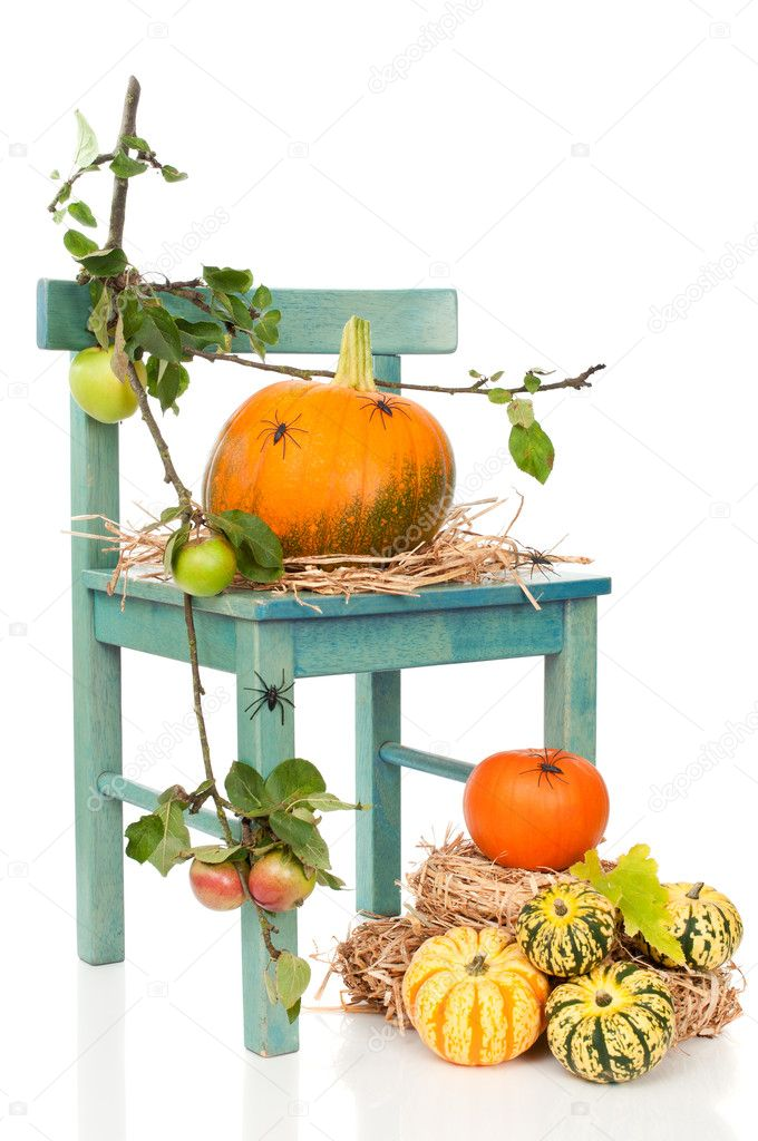 Halloween pumpkin harvest chair with spiders on straw — Stock Photo #11467033