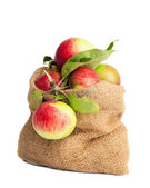 Sack Of Apples — Stock Photo