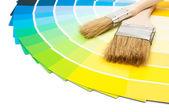 Paint Colour Swatches — Stock Photo