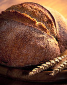 Rustic Loaf — Stock Photo