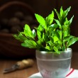 Garden Mint — Stock Photo