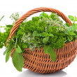 Herb Basket — Stock Photo