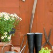 Potting Shed — Stock Photo