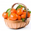 Stock Photo: Clementine Trug