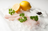 Fresh Cod Fillets — Stock Photo