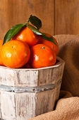 Clementine Crop — Stock Photo