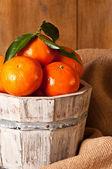 Clementine Crop — Stock Photo