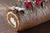 Christmas Yule Log Close Up — Stock Photo