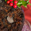 Old Fashioned Christmas Pudding — Stock Photo