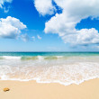 Paradise Beach — Stock Photo #11579565
