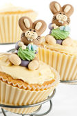 Easter Bunny Cake — Stock Photo