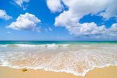 Idyllic Summer Beach — Stock Photo