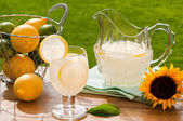 Summer Lemonade — Stock Photo