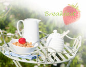 śniadanie na świeżym powietrzu — Zdjęcie stockowe