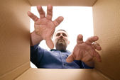Unpacking The Box — Stock Photo