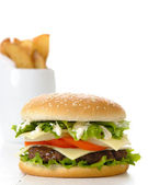 Burger & Fries — Stock Photo