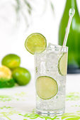 Gin & Tonic — Stock Photo
