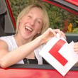 Passed The Driving Test — Stock Photo #11620289