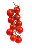 Tomatoes — Photo