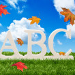ABC Letters With Autumn Leaves - Stockfoto