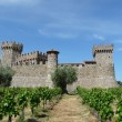 Castle in the Vineyards — Stock Photo