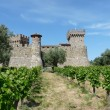 Stock Photo: Castle in the vineyards