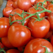 Tomatoes on a Vine — Stock Photo