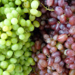Green and Purple grapes — Stock Photo