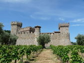 Castle in the Vineyards — Stok fotoğraf