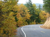 Beautiful autumn drive — Stock Photo