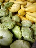 Squash and Zucchini — Stock Photo