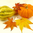 Pumpkin, Squash and Autumn leaves - Stock Photo