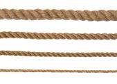 4 corde — Foto Stock