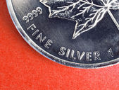 Fine silver coin — Stock Photo